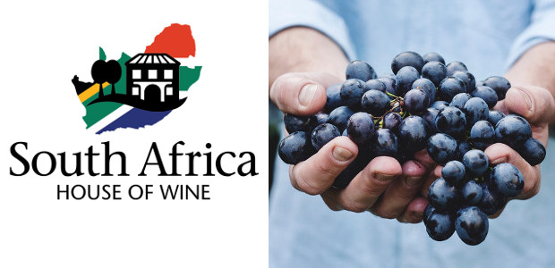 From South Africa House Of Wine… Kleine Zalze, Cabernet Sivignon, Stellenbosch. www.sahouseofwine.co.uk FACEBOOK South Africa House of Wine was established in 2019 as a dedicated retailer of South African wines […]