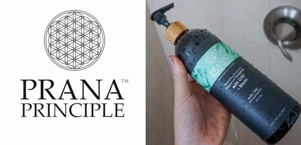 Prana Principle™ is your connection to premium quality, 3rd party lab tested, non-psychoactive (0.0%THC), broad spectrum hemp oil products. www.pranacbd.com FACEBOOK : TWITTER : INSTAGRAM We have 24 years of […]