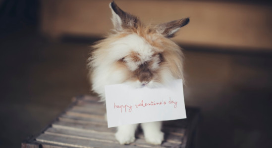Valentine's Fragrances He/She Will Love …. Delivered to Your Door (even next day) According to statistics, dining out was the leading 'gift category' for Valentine's in 2019 – but that […]