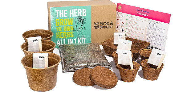 Grow Your Own Herb Plants Kit | Box & Sprout | Sustainable All in One Kit | Herb Planters | Unique Gardening Gifts for Men & Women | Mint Basil […]