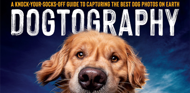 Dogtography: A Knock-Your-Socks-Off Guide to Capturing the Best Dog Photos on Earth Paperback See more and buy at :- rockynook.com/shop/photography/dogtography If you want to learn to create pictures that truly […]