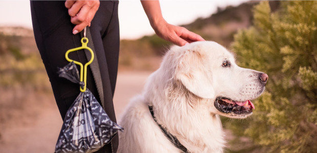 The dooloop® leash accessory allows you to hold multiple bags of dog poop with hands free convenience. No juggling, it's the easiest holder to use. Made in Maine of non-toxic, […]